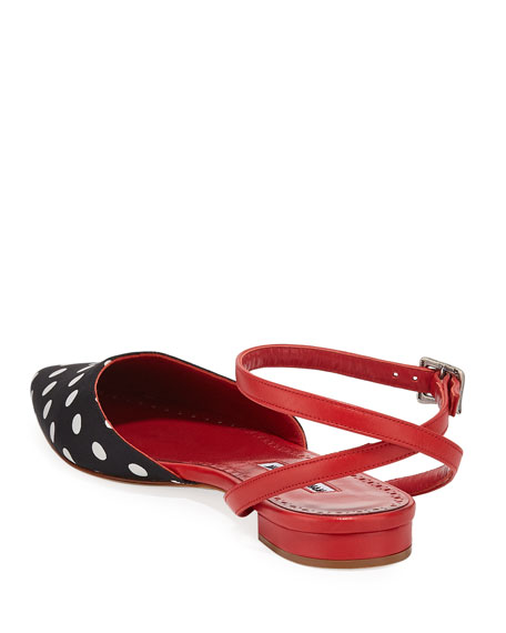 Asenso Leather Ankle-Strap Flats