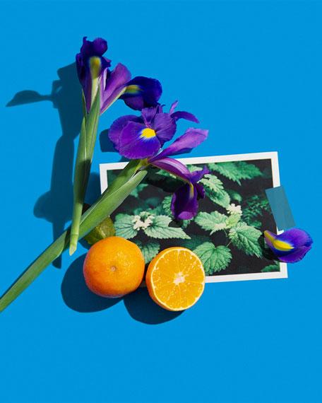 Silver Iris Cologne Absolue, 100 mL