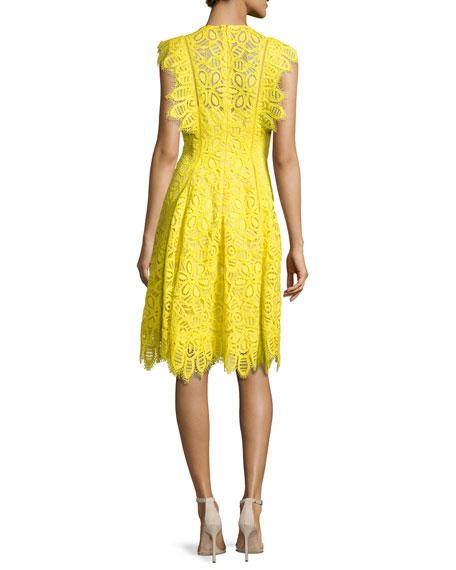 Ruffled-Trim Lace Dress