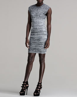 Alexander Wang Stretch Cap-Sleeve Degrade Dress