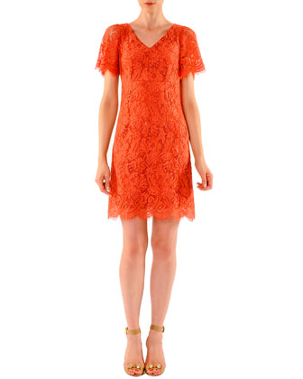 Above-Knee Short-Sleeve Lace Dress