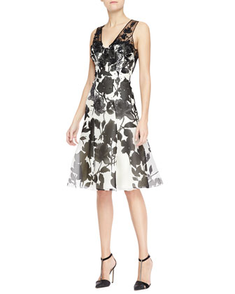 Sleeveless Embroidered Sheer-Back Dress, White/Black