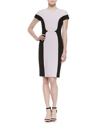 Double-Face Stretch Two-Tone Sheath Dress