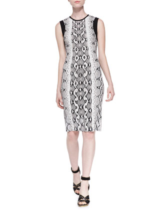 Python-Print Dress w/ Contrast Trim, Black/White