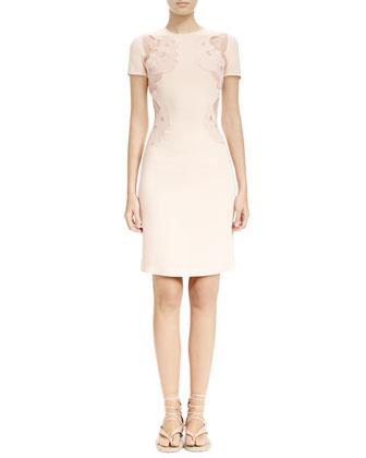Sheer Cloud-Embroidered Applique Dress, Rose