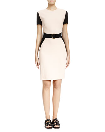 Colorblock Mesh-Inset Sheath Dress, Rose/Black
