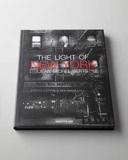 The Light of New York Book