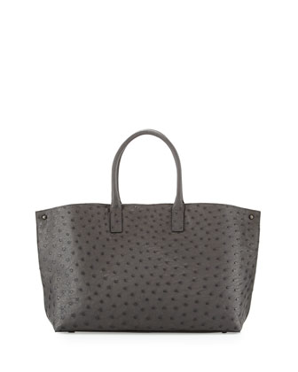 Ai Small Ostrich and Leather Tote Bag, Gray