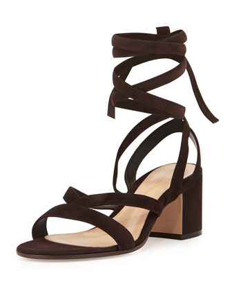 Suede Lace-Up Gladiator Sandal, Dark Brown
