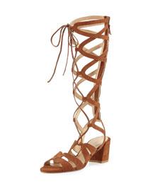 Grecian Suede Knee-High Gladiator Sandal, Saddle