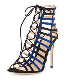 Two-Tone Caged Suede Sandal, Black/Blue