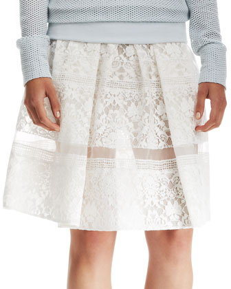 Pleated Lace Sheer-Stripe Skirt