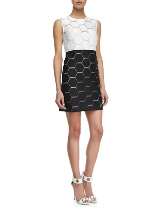 Eloise Hexagon Shift Dress