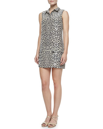 Lucida Leopard-Print Silk Dress