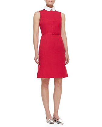 Kimberly Belted Collar Dress