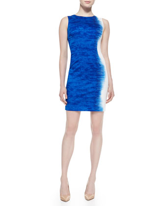 Emory Palisades Sleeveless Sheath Dress