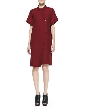 Colorblock Bias-Placket Shirtdress