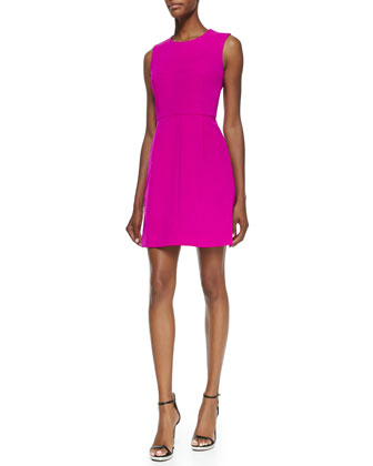 Coco Sleeveless Seamed A-line Dress