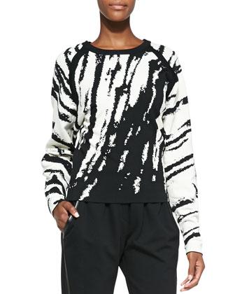 Core Zebra-Stripe Knit Pullover