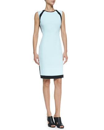 Doji 2 Sleeveless Colorblock Sheath Dress