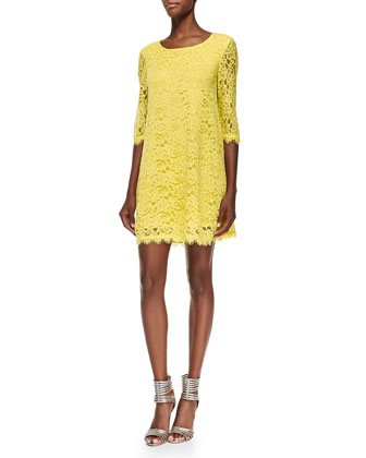 Martina Scallop-Trim Lace Dress