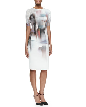 Carla Graphic-Print Sheath Dress W/ Mesh Sleeve