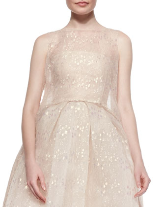 Iridescent Chantilly Lace Overlay Tunic, Blush