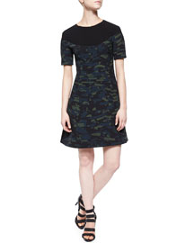 Spray-Stripe Flared Dress