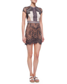 Short-Sleeve Lace Sequence Dress