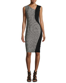 Lyndsy Sleeveless Flocked Jacquard Sheath Dress