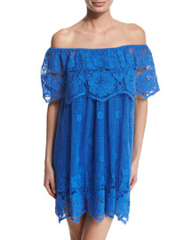 Angelique Crocheted-Lace Dress