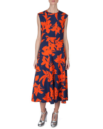 Printed Sleeveless Flare Dress