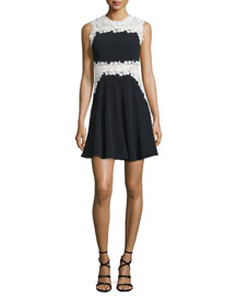 Sleeveless Lace-Trimmed Fit-and-Flare Dress, Black/White