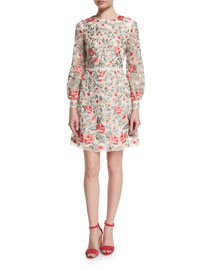 Long-Sleeve Embroidered Organza Dress, Multi