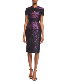 Short-Sleeve Floral Jacquard Sheath Dress, Mulberry/Black