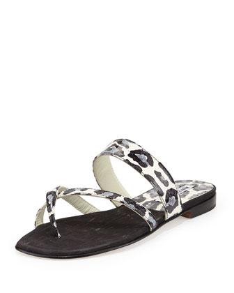 Susa Leopard-Print Snake Flat Thong Sandal, Black/Blue