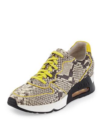 Love Printed Trainer Sneaker, Roccia Yellow