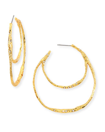 Phoenix Crystal Double Hoop Earrings
