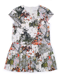 Pleated Floral Fit-and-Flare Dress, Gray/Multicolor, Size 4-6
