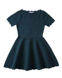 Scalloped Fit-and-Flare Knit Dress, Size 8-14